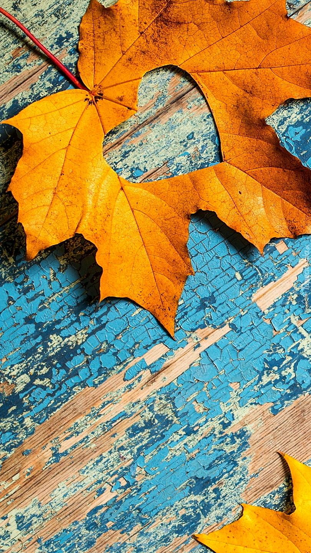Pożółkły liść z wyciętym sercem na desce