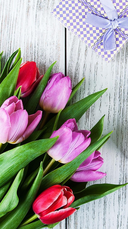 Prezent obok tulipanów