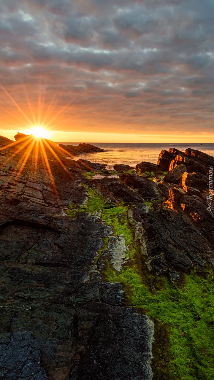 Promienie słońca padające na omszałe skały