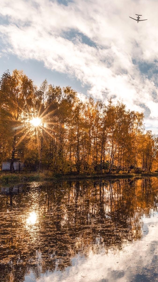Promienie słońca wśród drzew nad stawem
