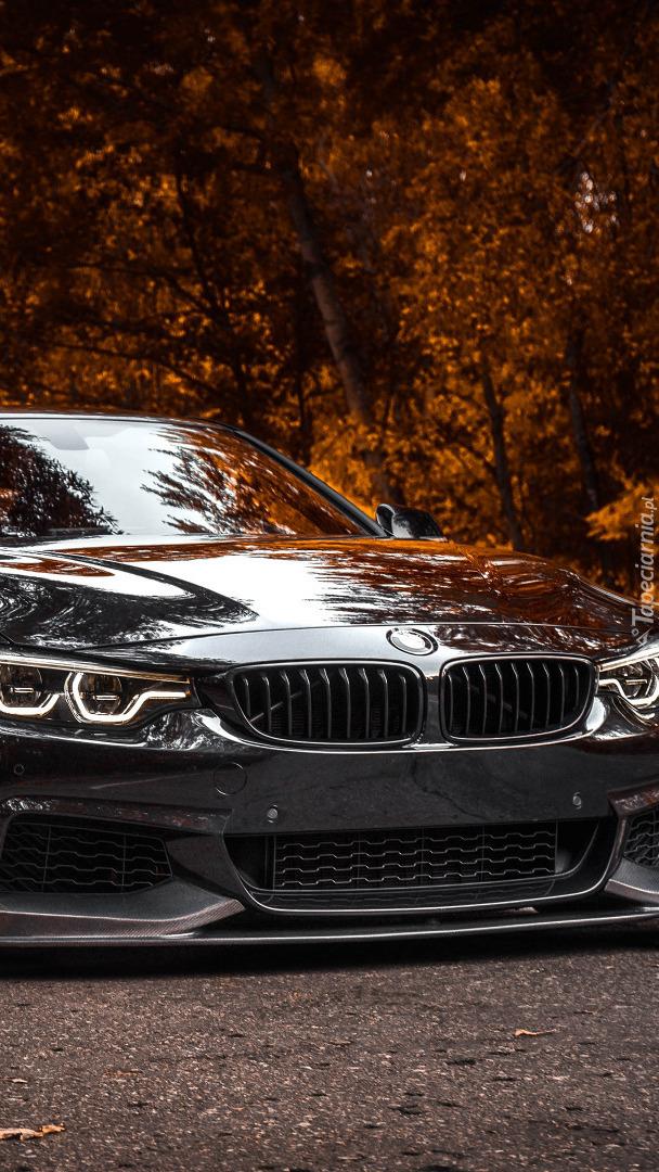 Przód BMW M4 F82