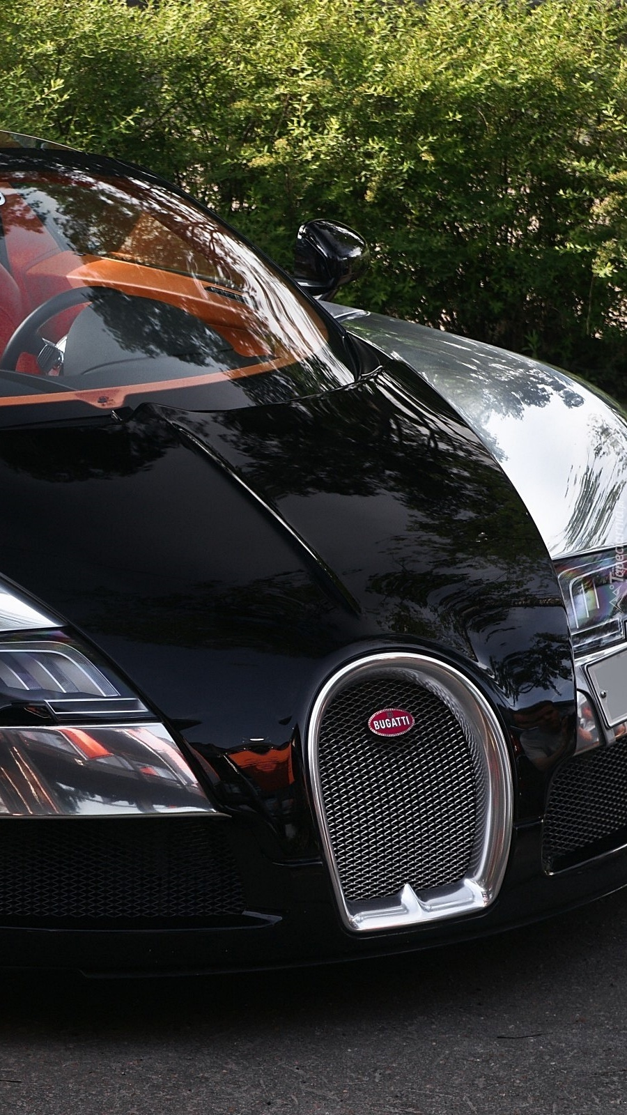 Przód Bugatti Veyron