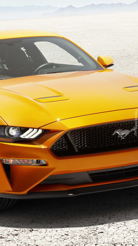Przód Forda Mustanga GT