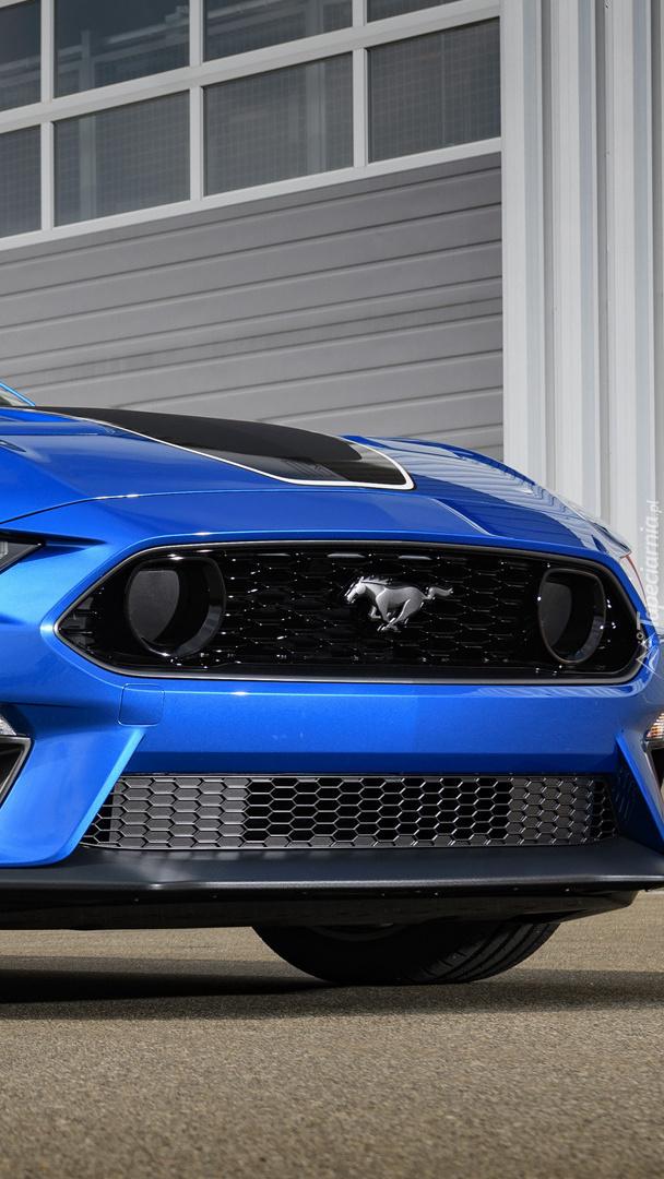 Przód Forda Mustanga Mach 1