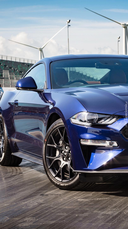 Przód grantowego Forda Mustanga