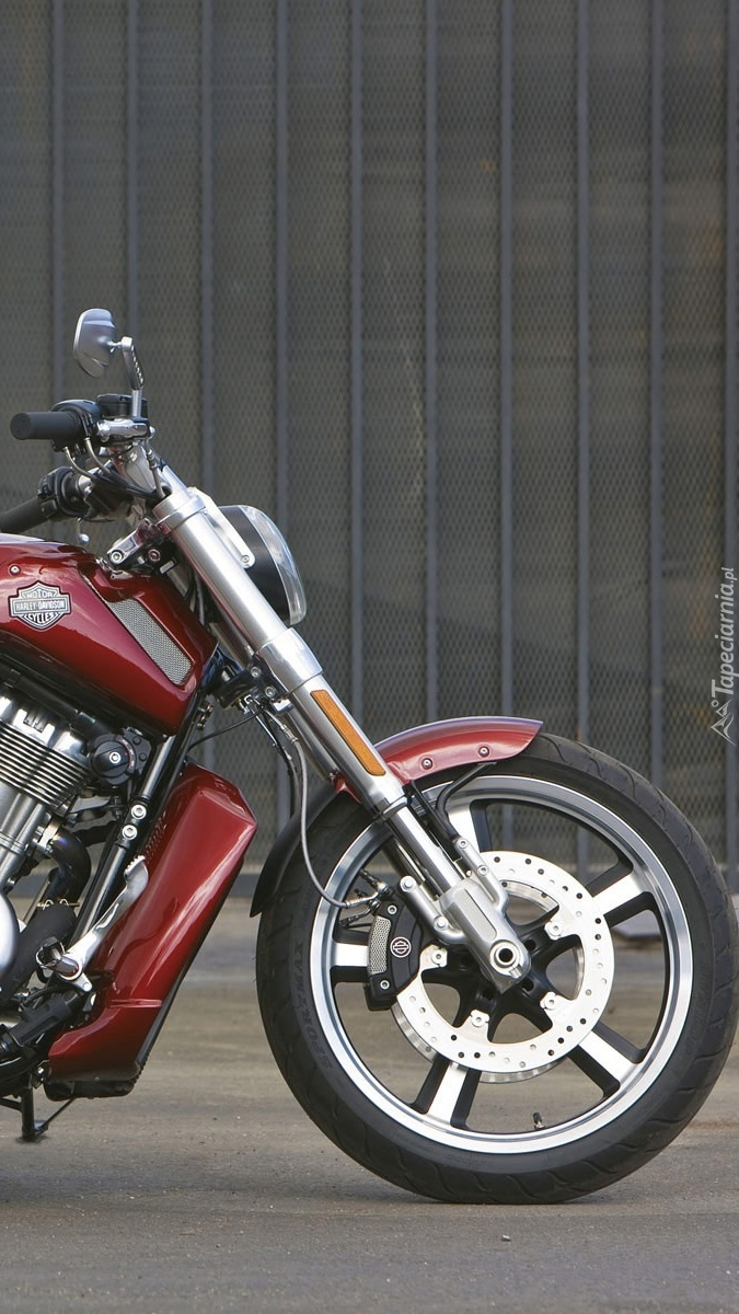 Przód Harleya Davidsona