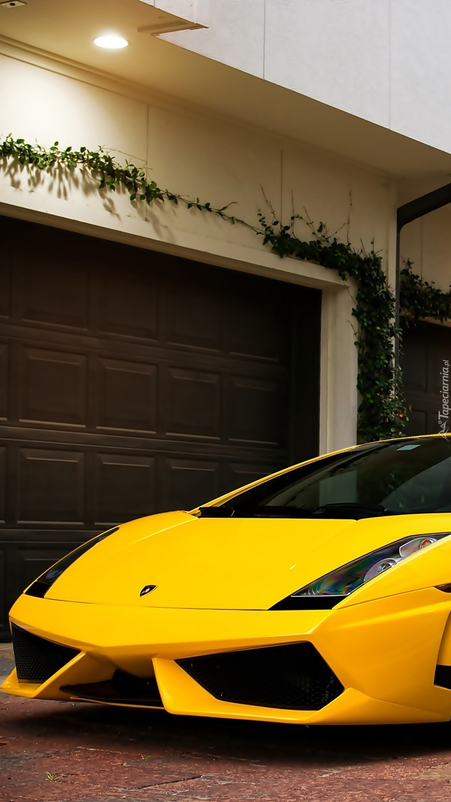 Przód  Żółtego Lamborghini Gallardo
