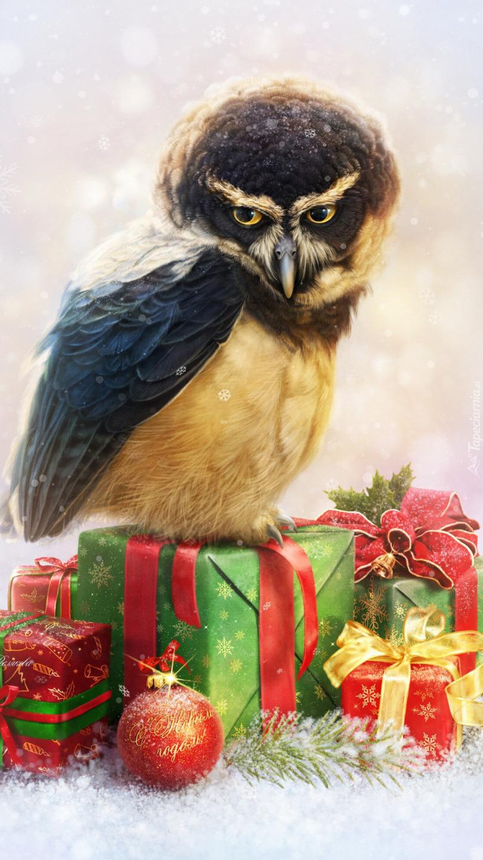Puchaczyk żółtobrzuchy na prezentach świątecznych