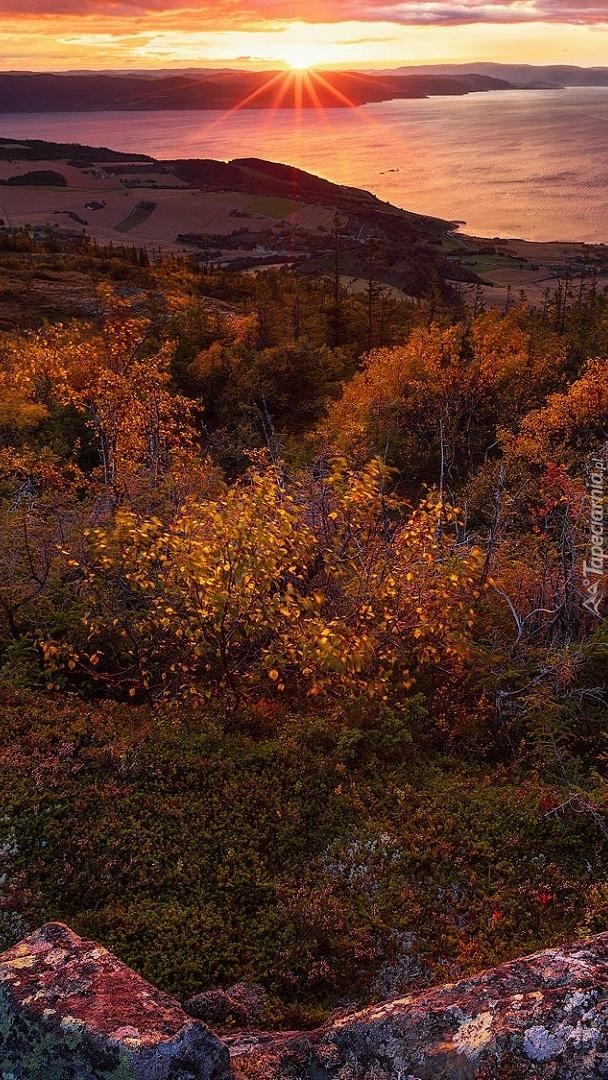Rezerwat przyrody Bymarka o zachodzie słońca