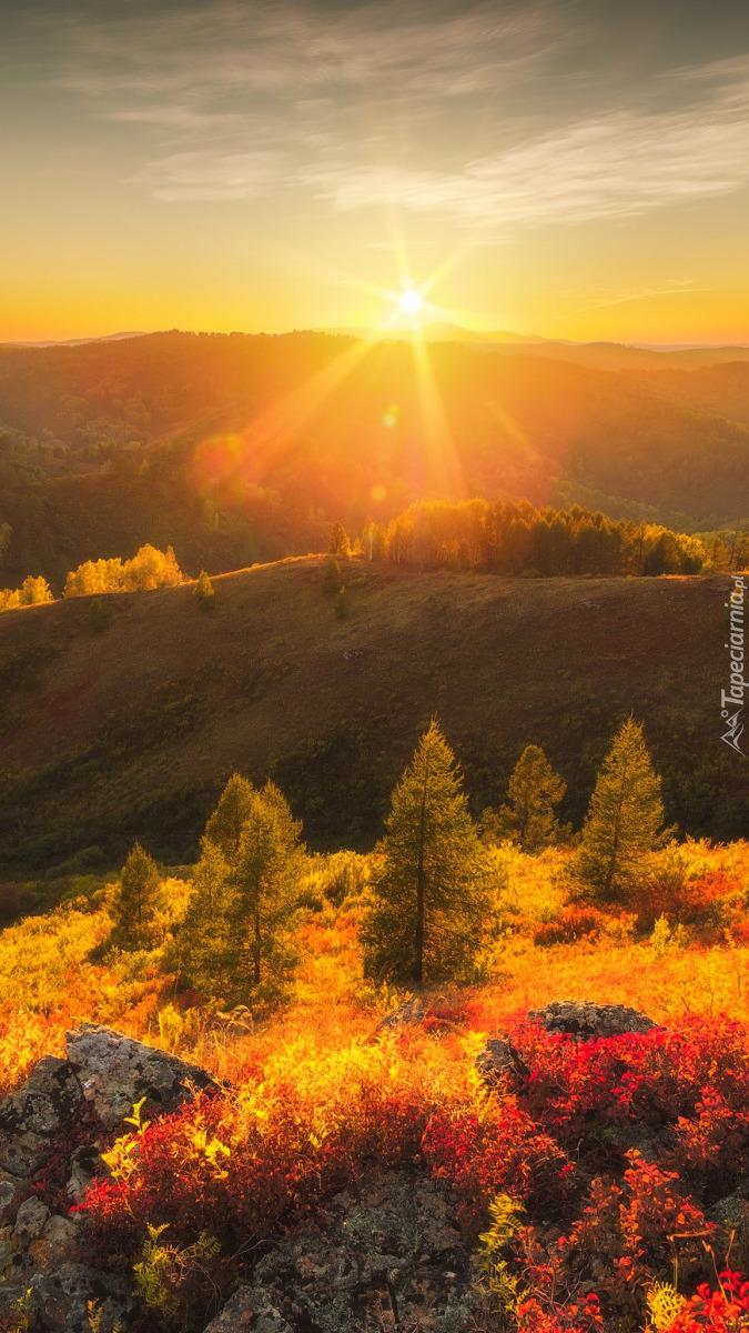 Rezerwat Tigirek w jesiennym blasku słońca