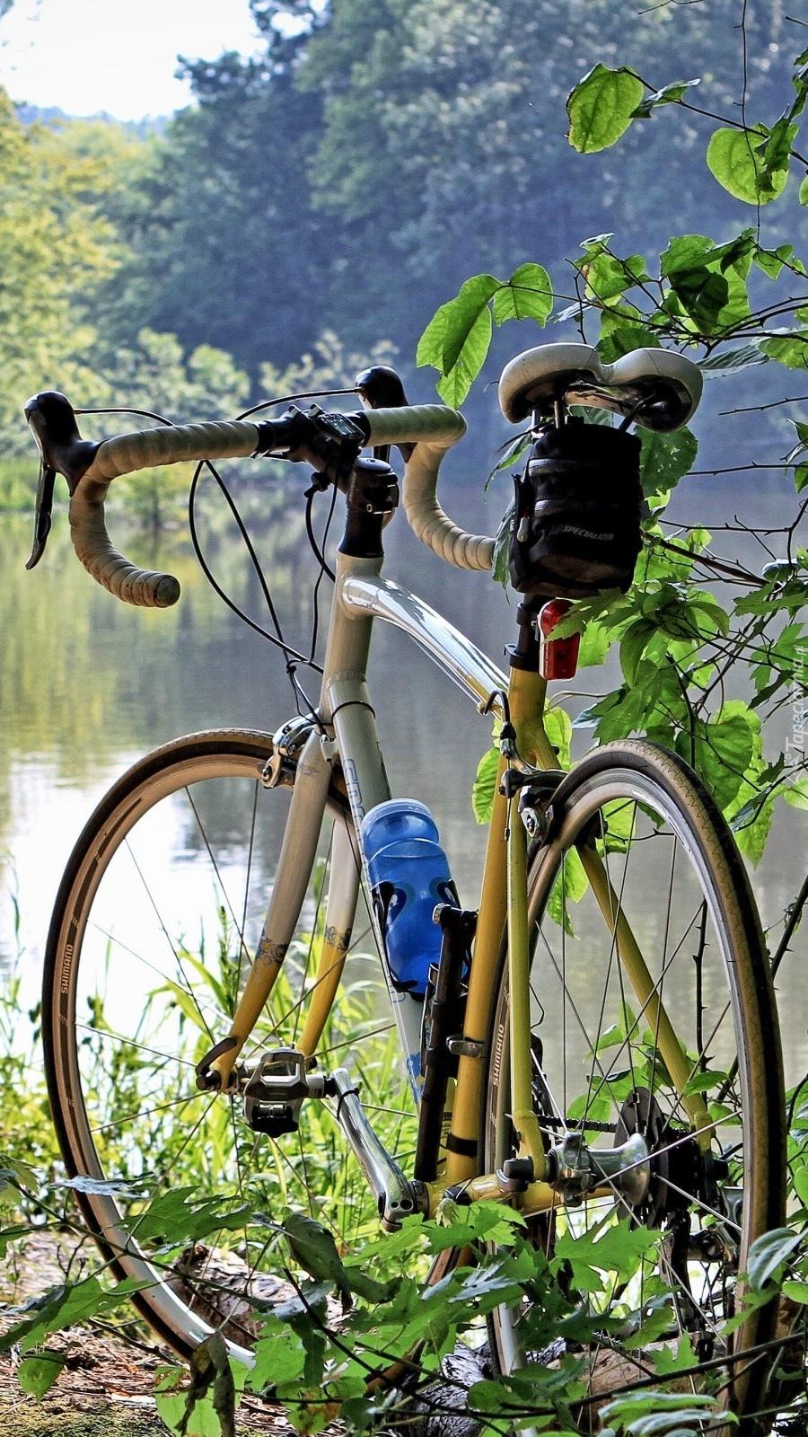 Rower nad brzegiem jeziora