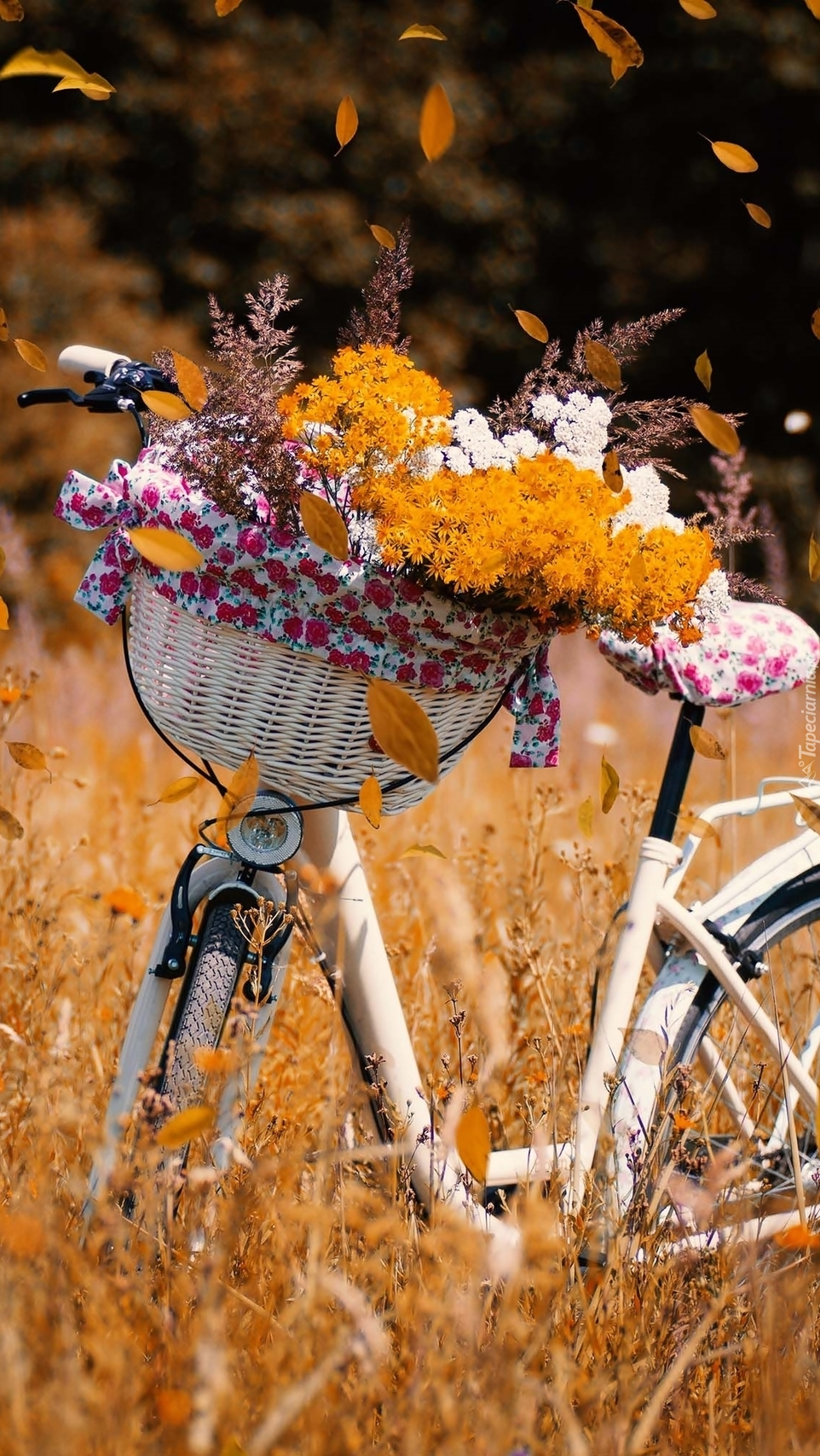 Rower z bukietem jesiennych kwiatów