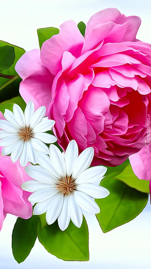 Róża i białe kwiaty w 2D