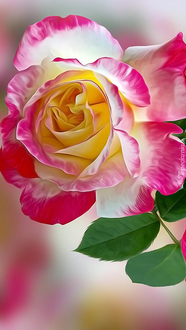 Róża w 2D