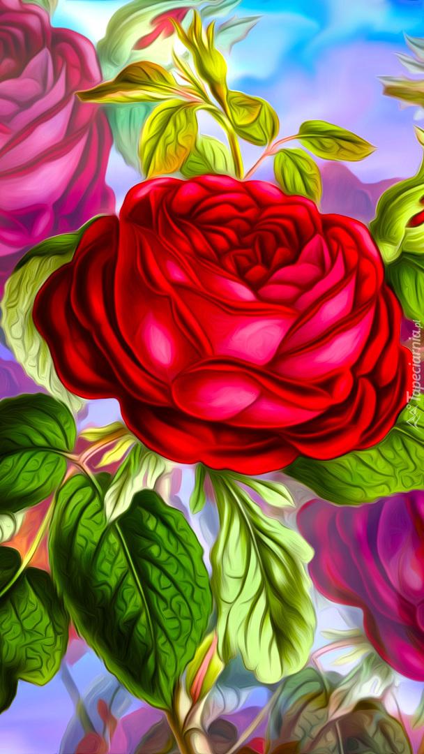 Róża w grafice