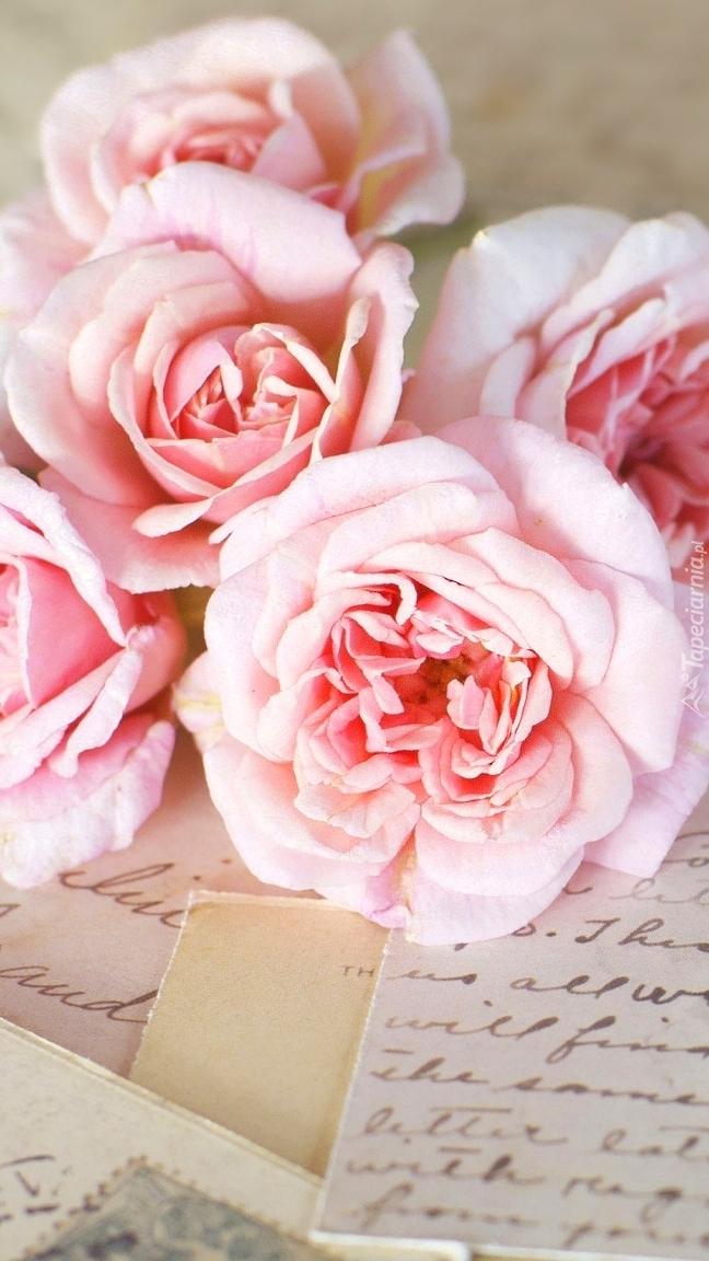 Róże na listach