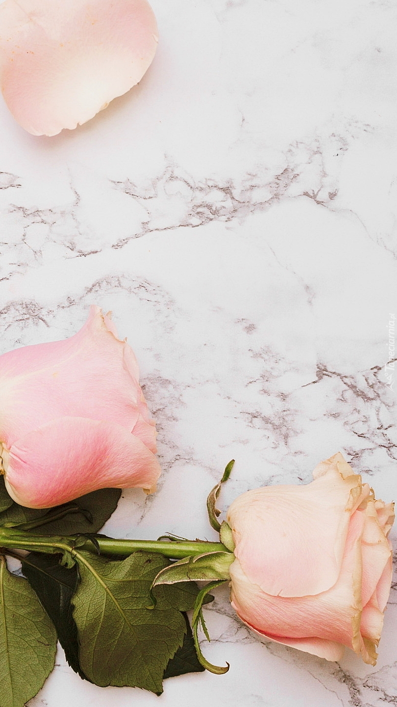 Róże na marmurowym tle