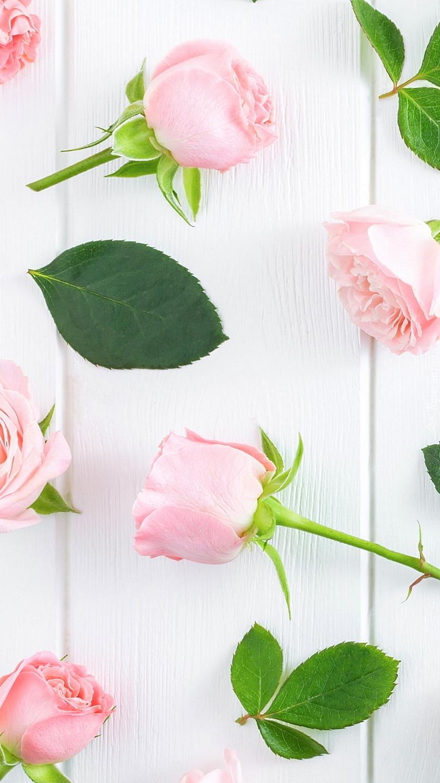 Róże rozsypane na desce