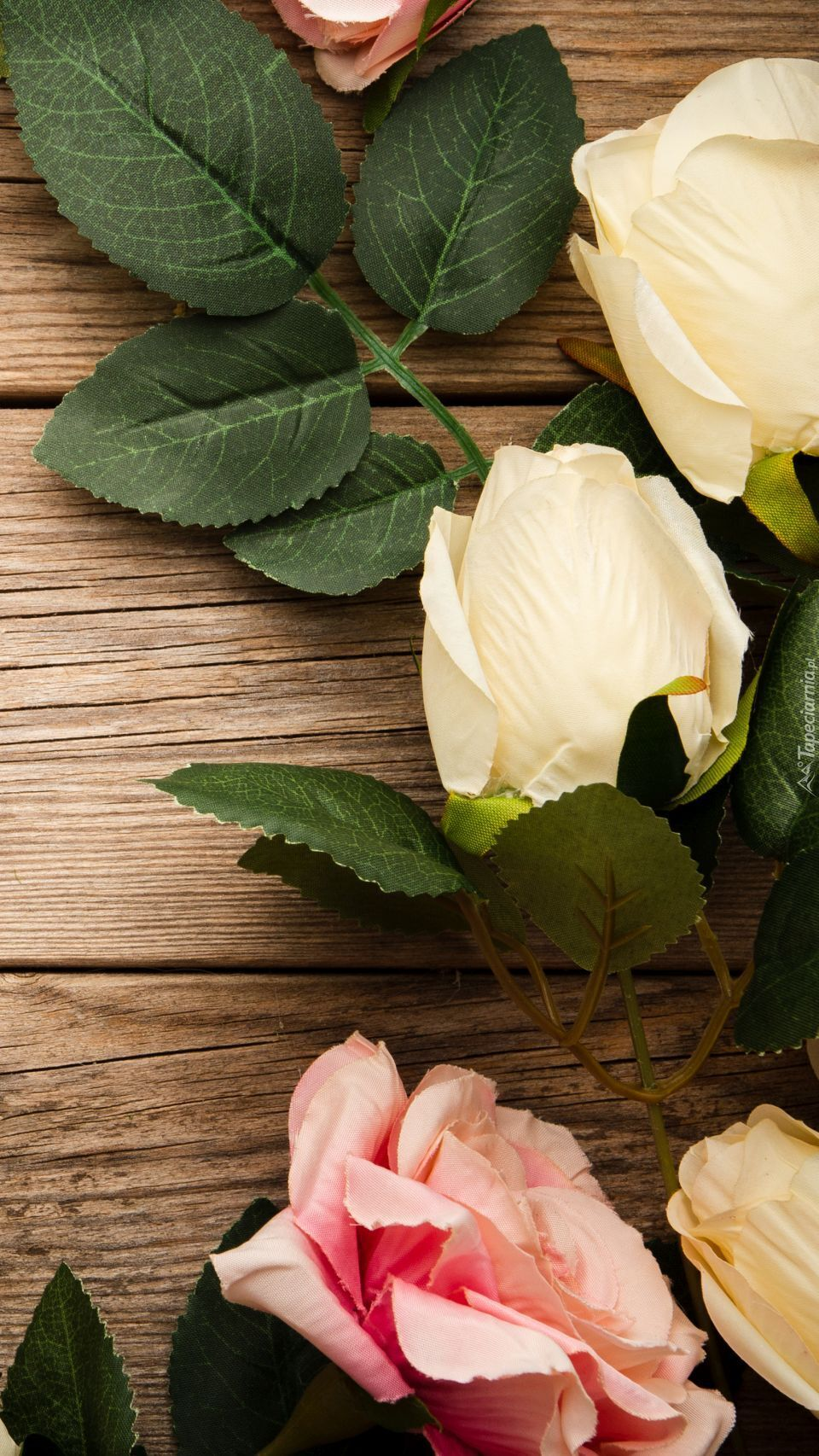 Róże ułożone na deskach