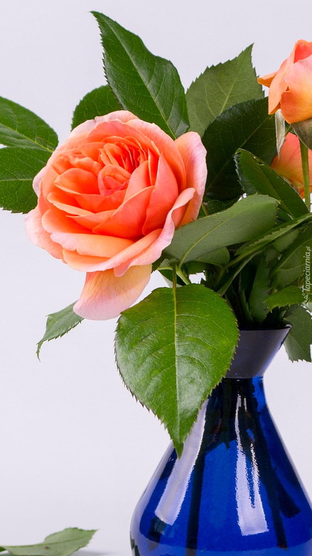 Róże w niebieskim wazoniku