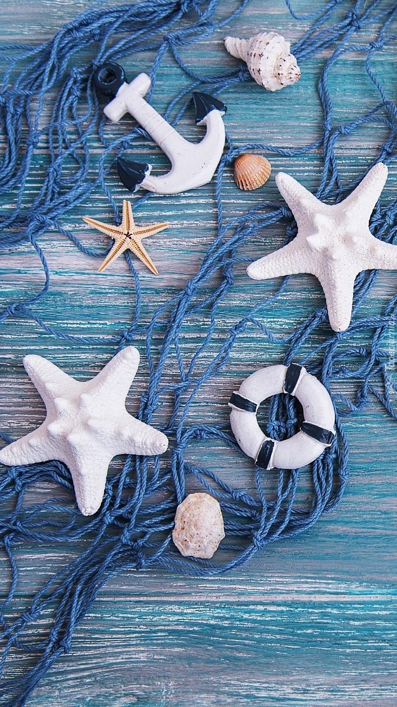 Rozgwiazdy i muszelki na sieci ze sznurka