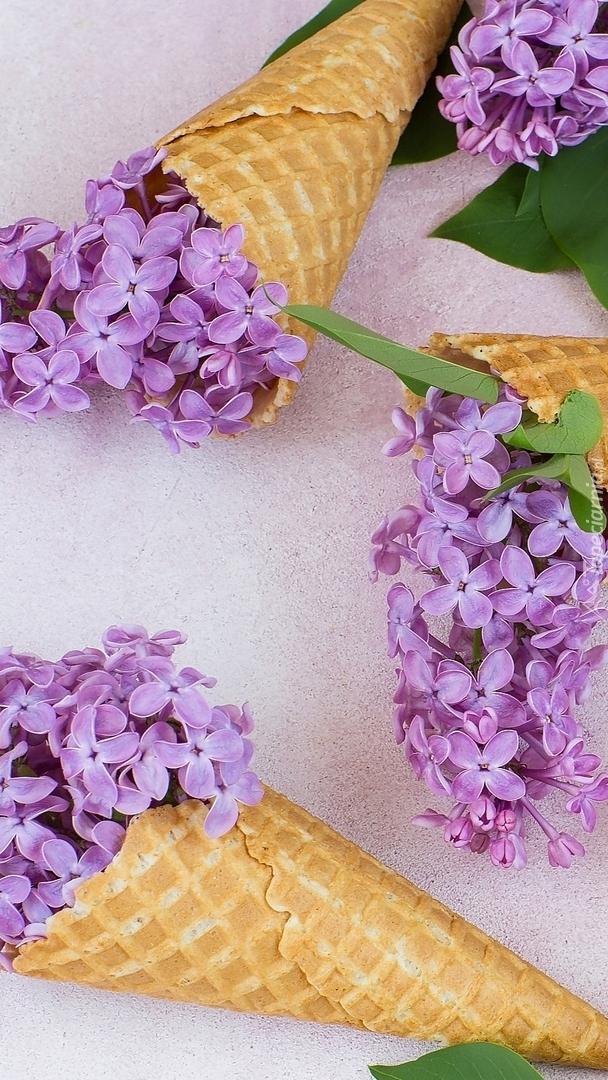 Rożki z kwiatami bzu
