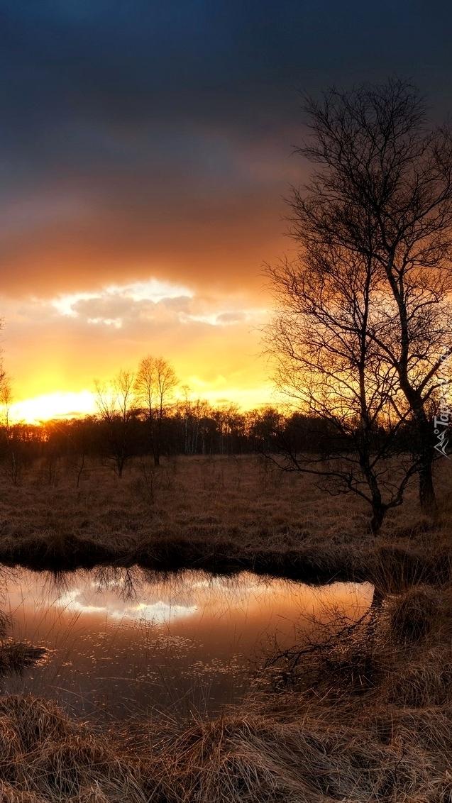 Rozlewisko o zachodzie słońca