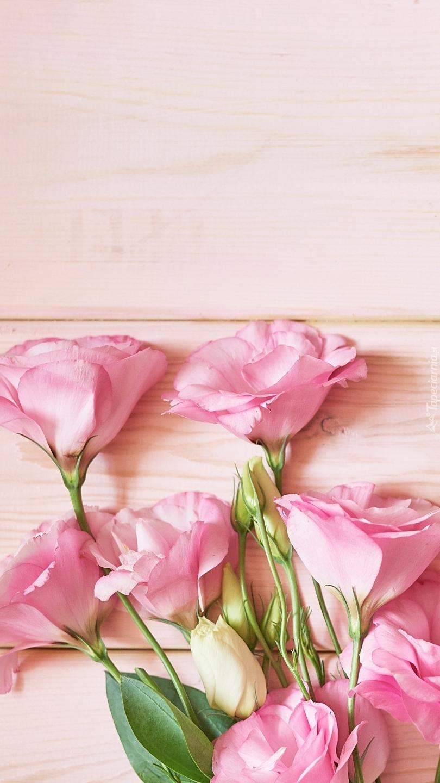 Różowe eustomy