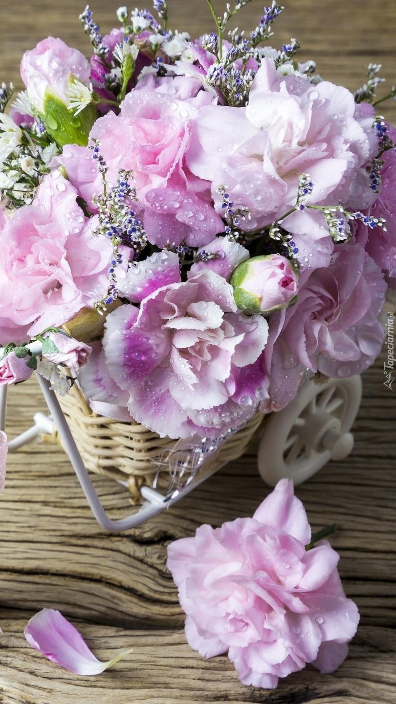 Różowe goździki Szabo