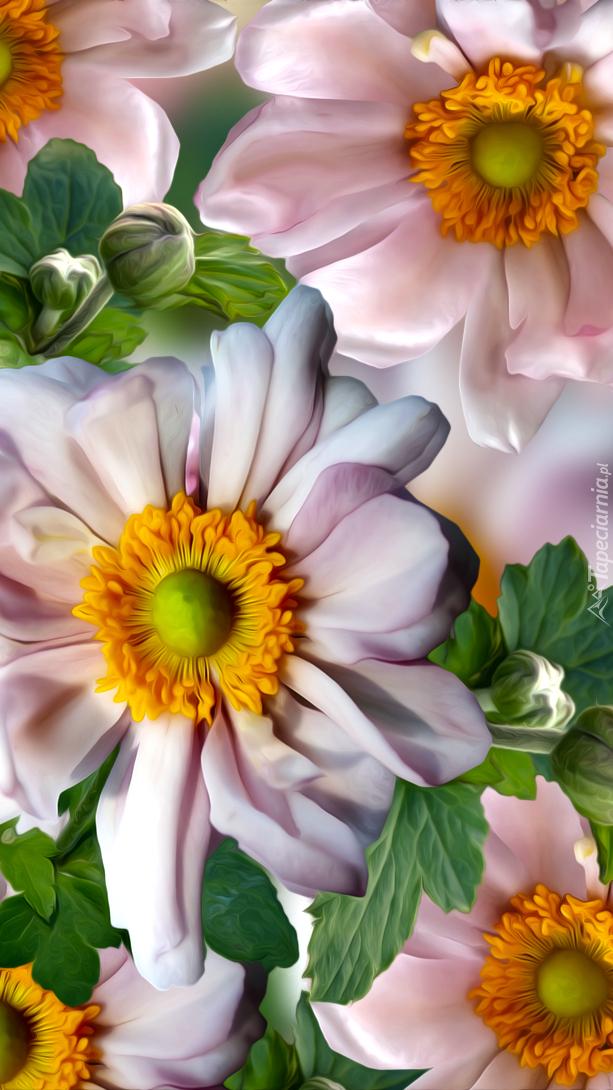 Różowe kwiatki w grafice