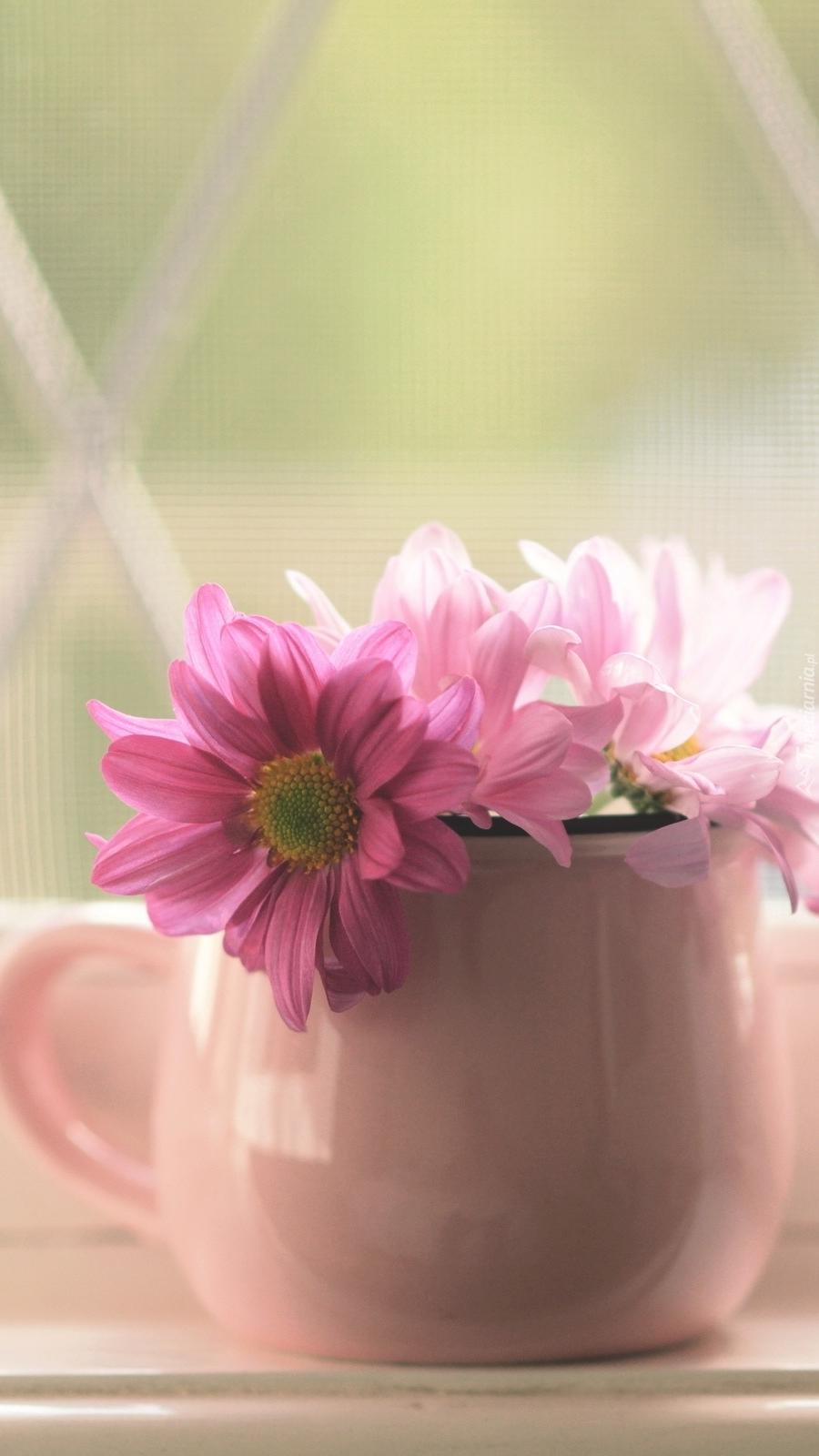 Różowe kwiatki w wazoniku na parapecie