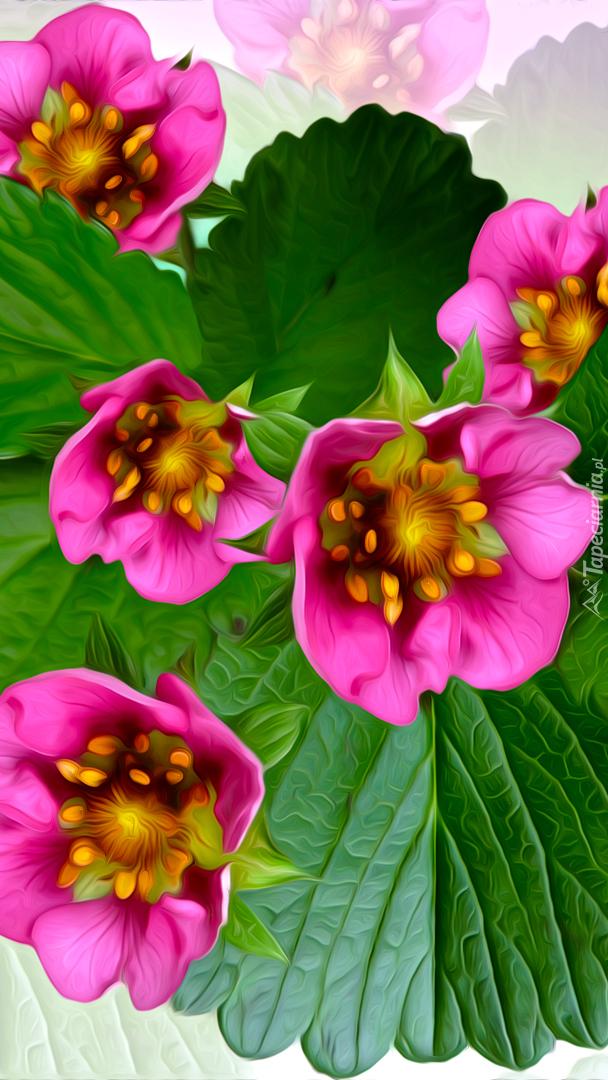 Różowe kwiaty i liście