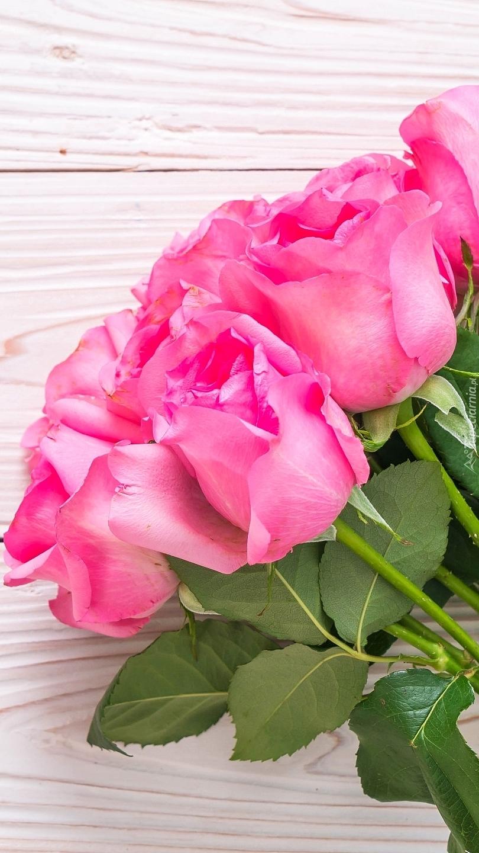 Różowe róże na deskach