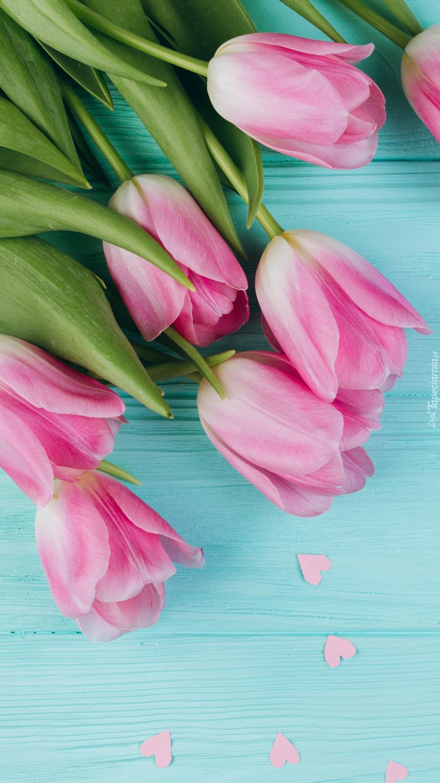 Różowe tulipany i rozsypane serduszka