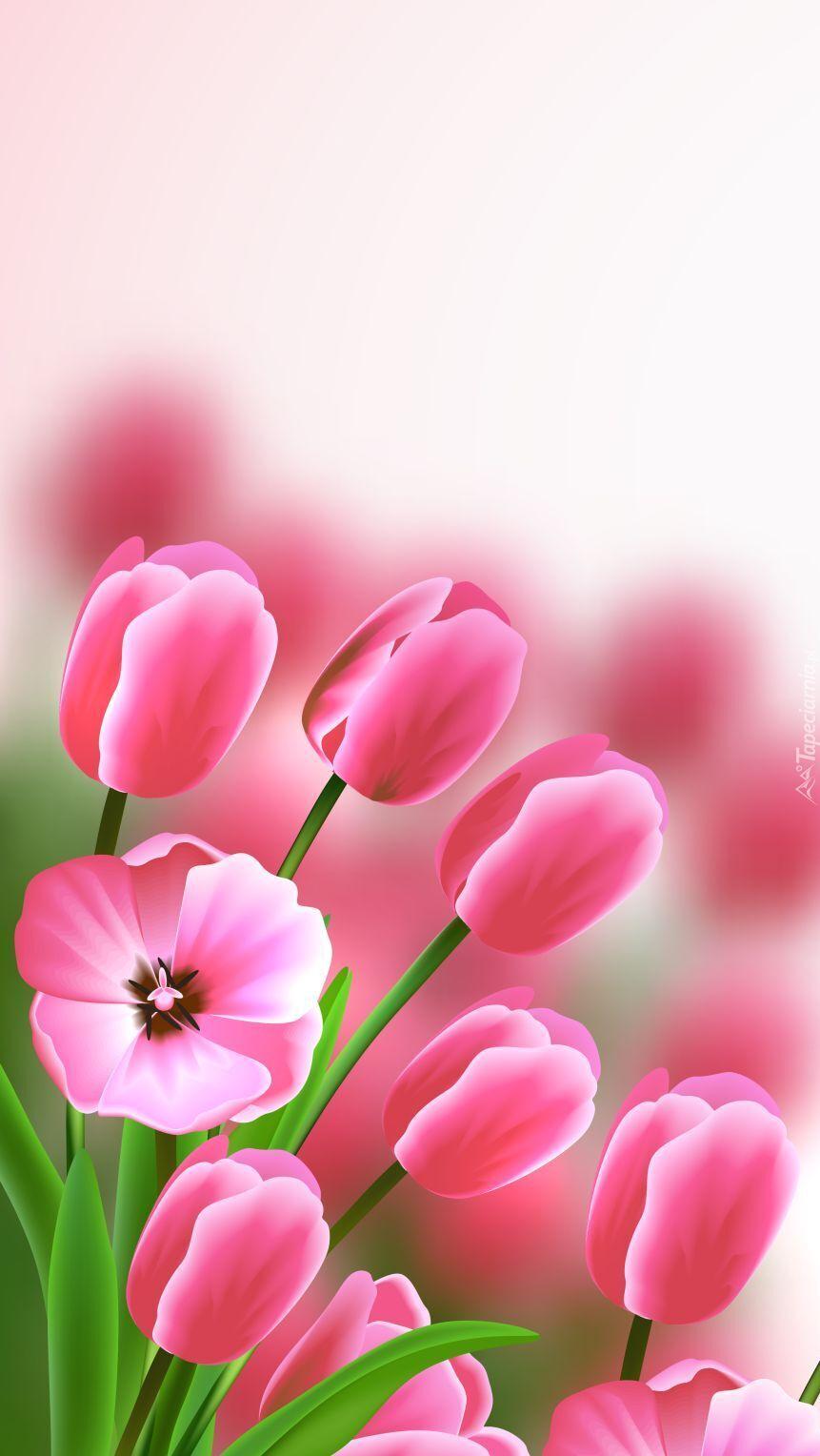 Różowe tulipany w 2D