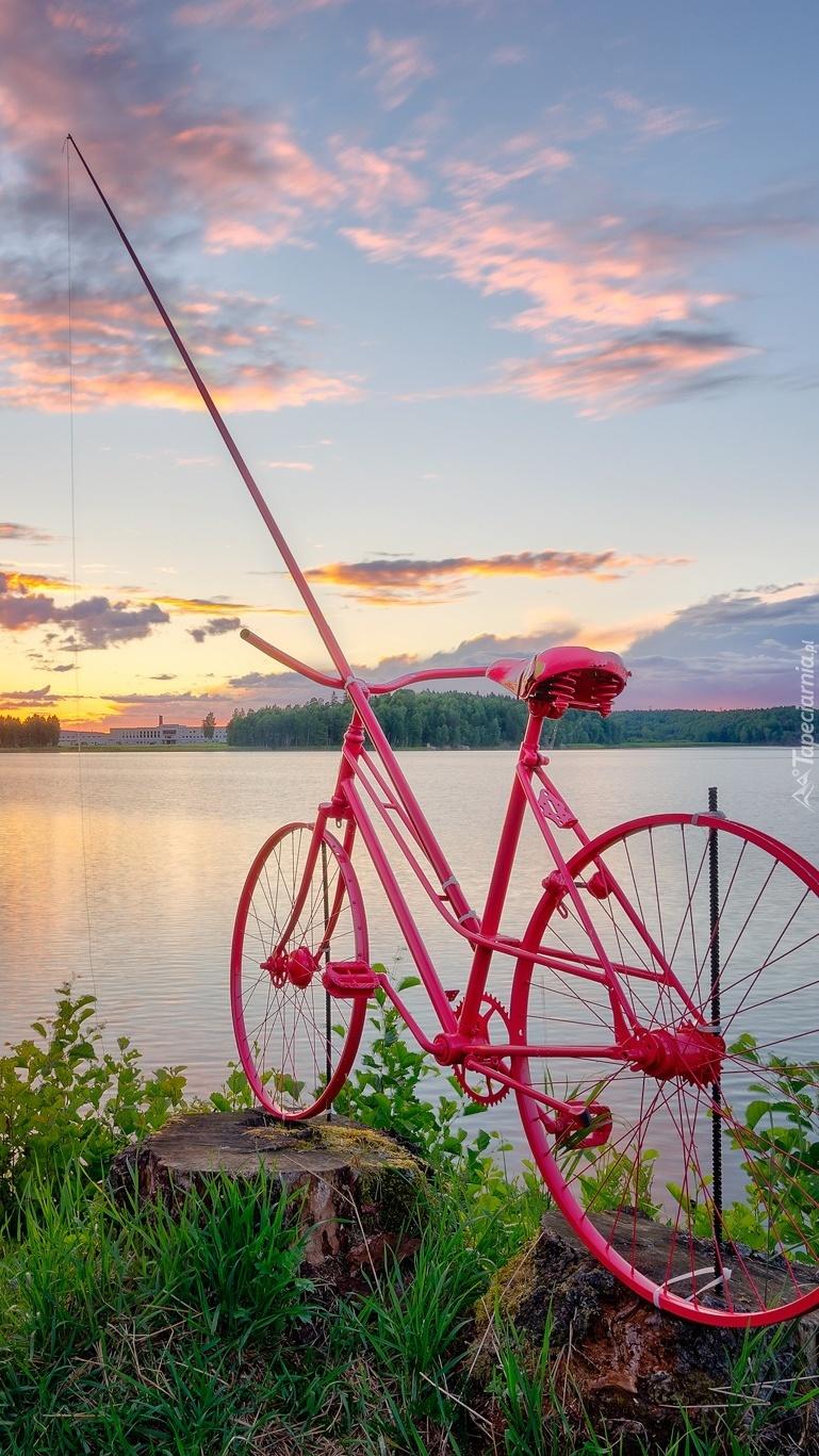 Różowy rower z wędką