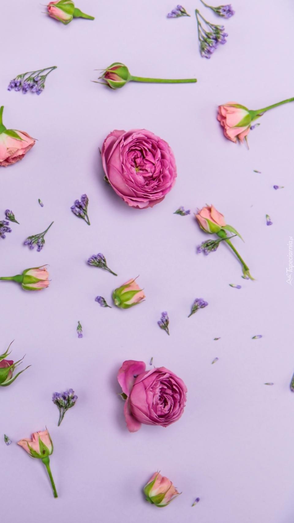 Rozrzucone kwiatki
