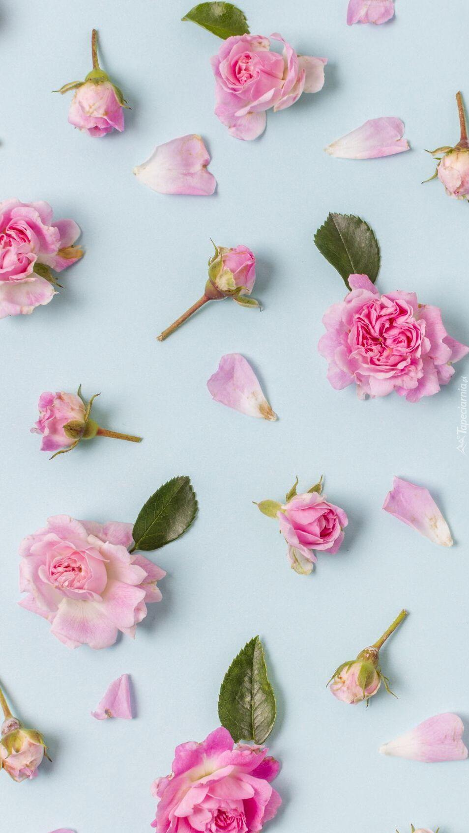 Rozsypane róże