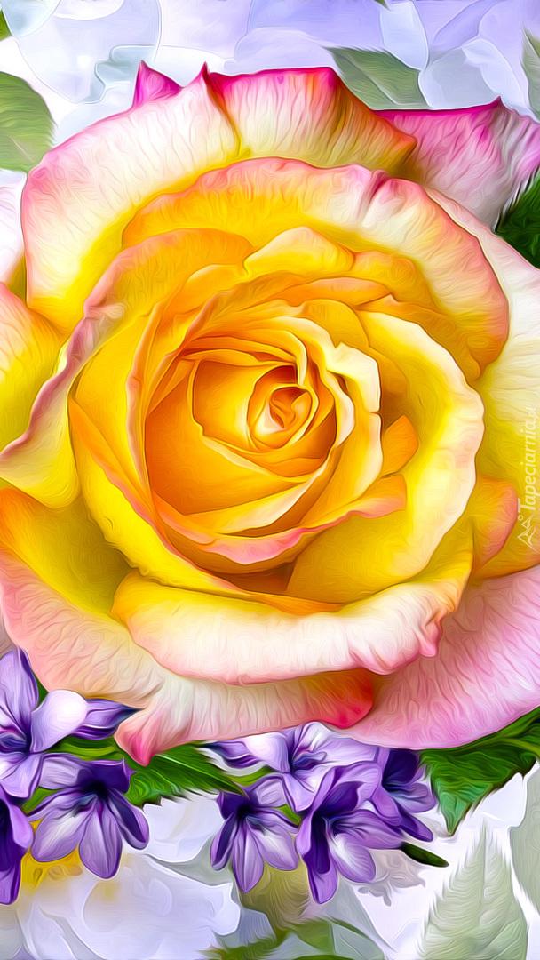 Rozwinięta żółta róża