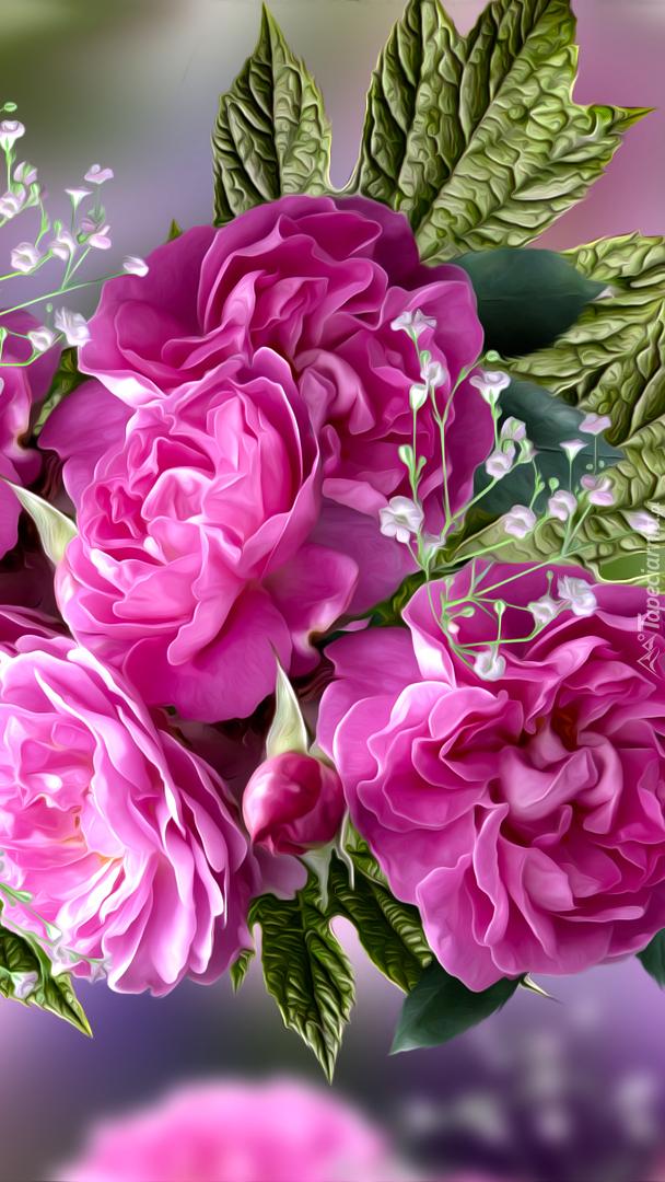 Rozwinięte róże