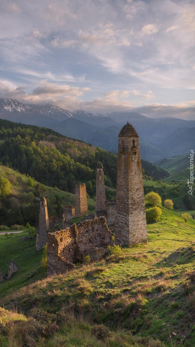 Ruiny wież obronnych