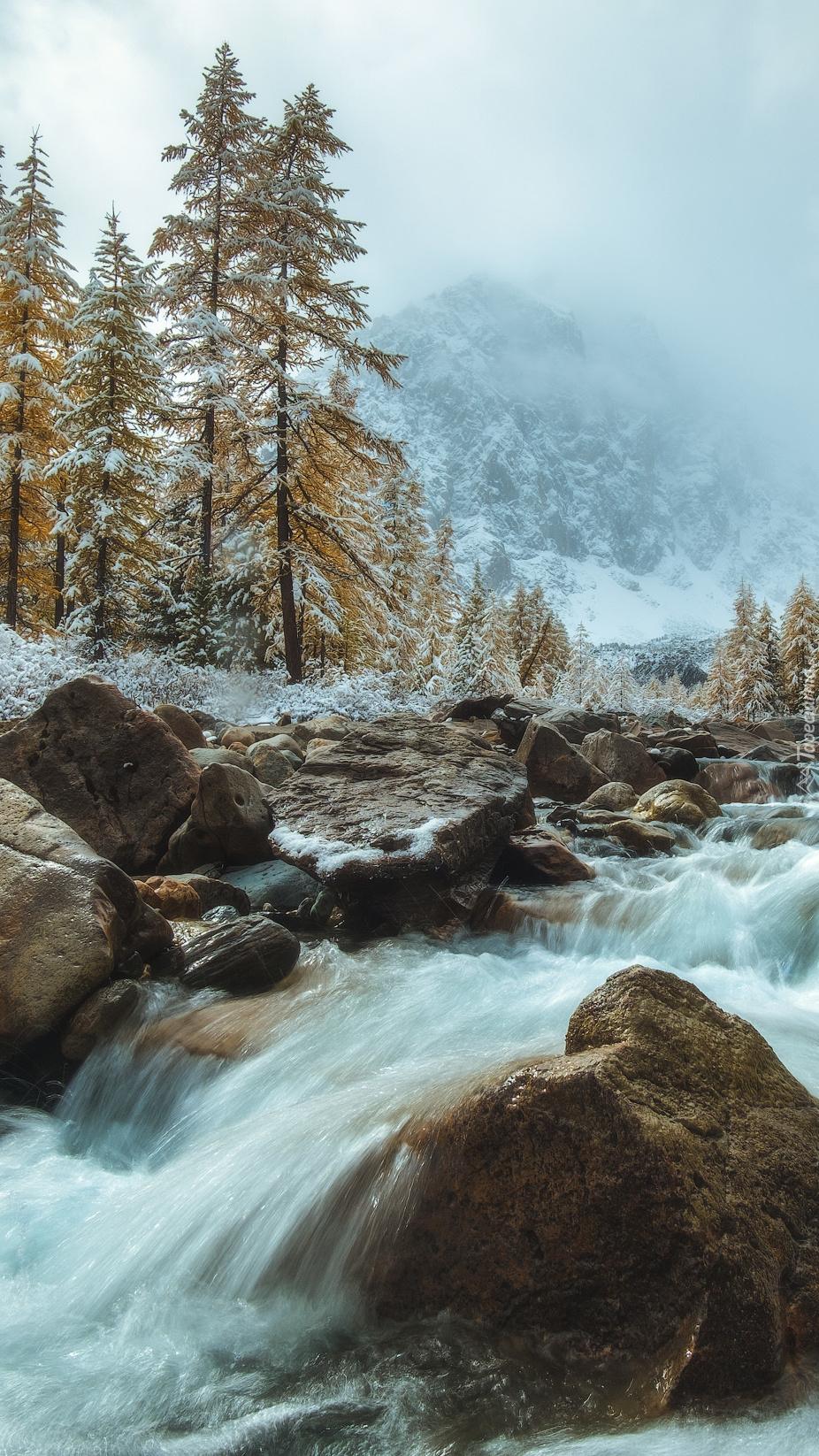 Rwąca górska rzeka