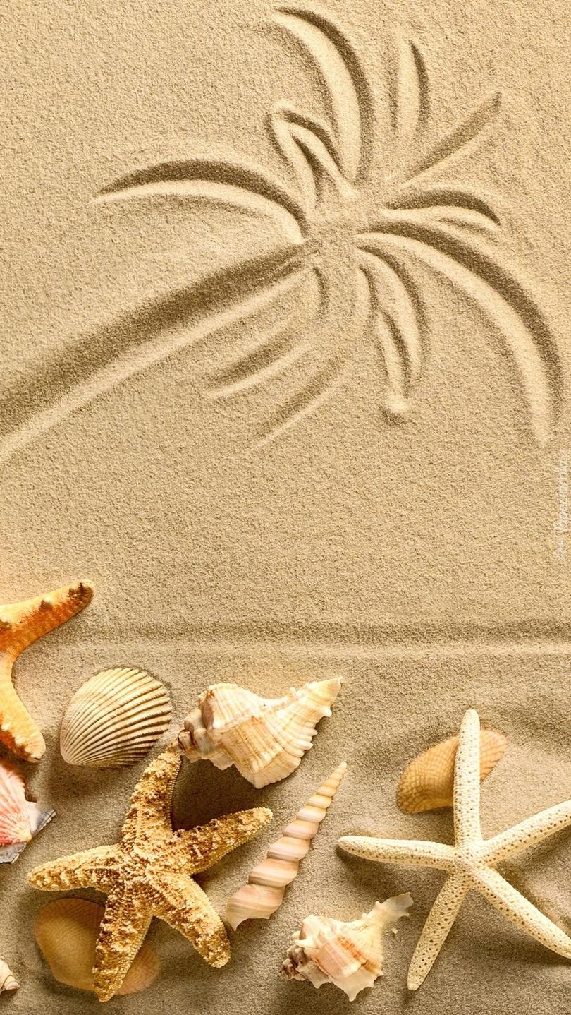 Rysunek z muszelkami na piasku