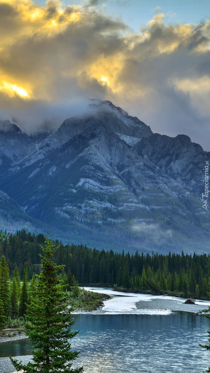 Rzeka Bow w Parku Narodowym Banff