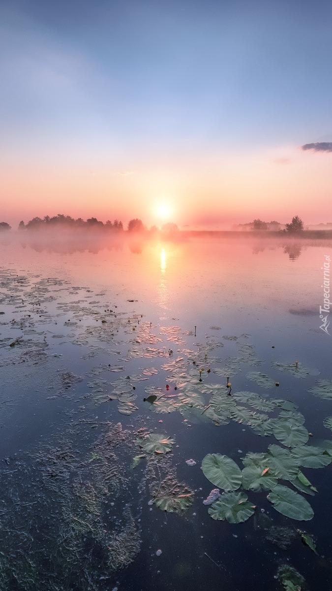 Rzeka Dubna o wschodzie słońca w Łotwie