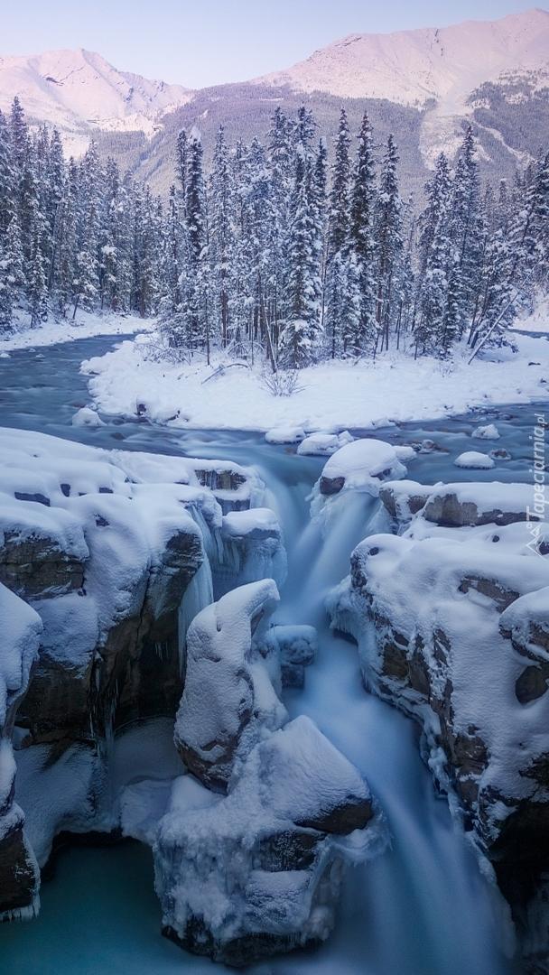 Rzeka i wodospad Sunwapta w Parku Narodowym Jasper