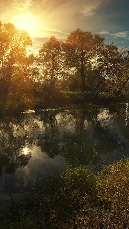 Rzeka Istra