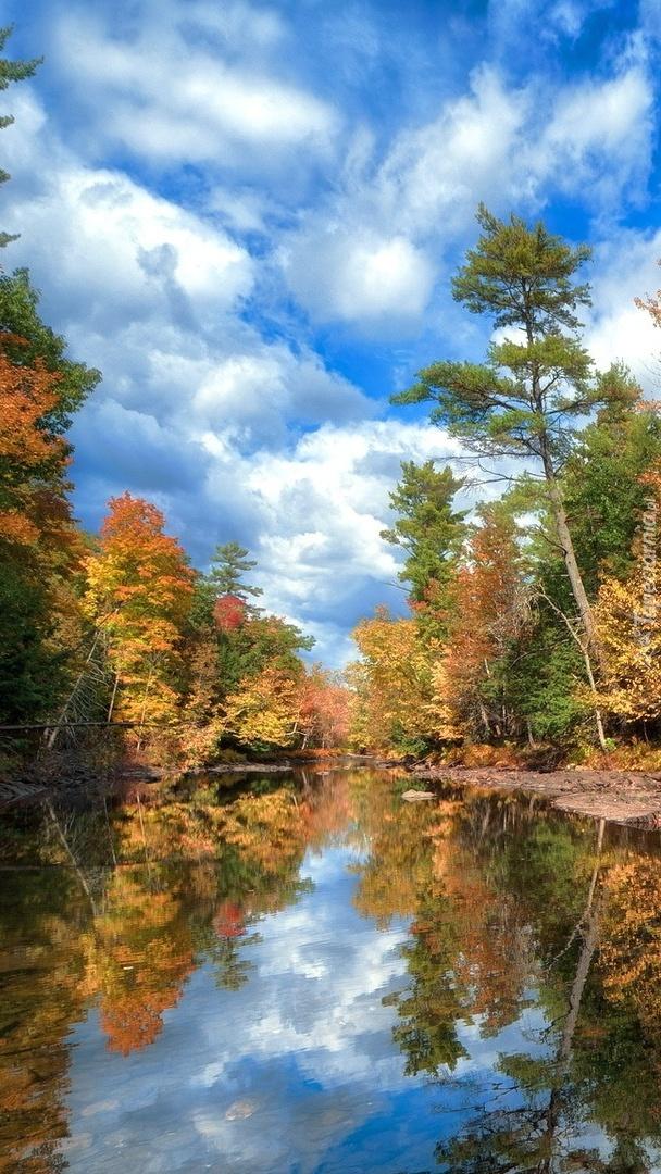 Rzeka jesienią