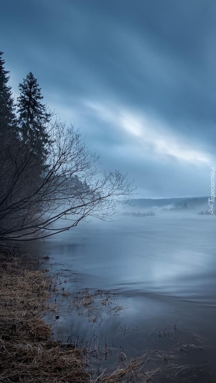 Rzeka Koyva