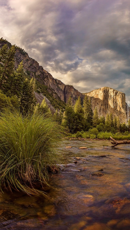 Rzeka Merced u podnóża gór